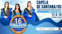 Vem aí a 16ª Feira do Peixe de Capela de Santana